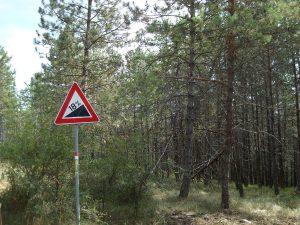 Ein schöner Waldpfad führt zum Monte della Modina
