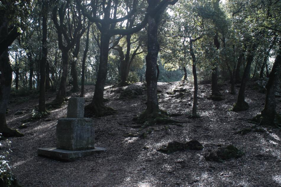 Quelle: http://www.umbriatourism.it/de/-/trekking-da-spoleto-a-monteluco?rc=11535&cc=&i=1&p=/trekking&t=Hiking%20and%20Trekking