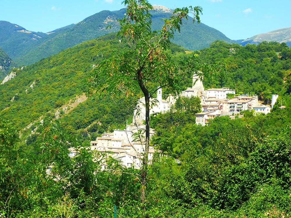 Poggio Bustone hinaufzugehen bedeutet fast, den Steilhang eines Berges hinaufzuklettern (Bruder Massimo Fusarelli).